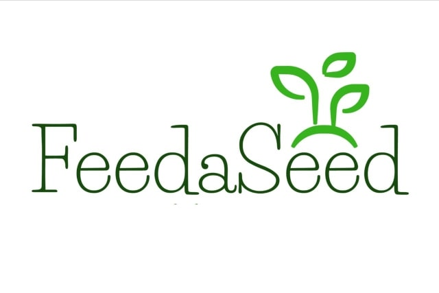 Feed a Seed – Cannabis Seed Bank South Africa